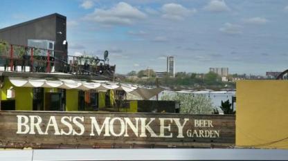 brass-monkey